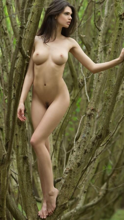 Грудастая брюнетка в лесу